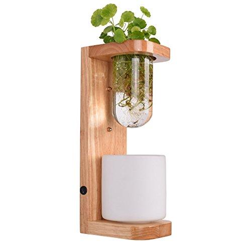 FIONADAN Pflanze Licht Pflanze Schrankbett Im Wohnzimmer Mit Bar, Restaurant Kreative Indoor Led Micro-Landschaft Pflanzen Wachsen Lichter