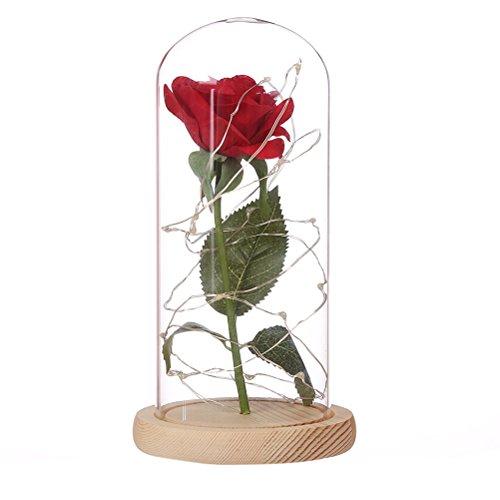 LEDMOMO Pink Seide mit LED Licht in Kuppel Glas in Holz-Grundlage für Das Geschenk -