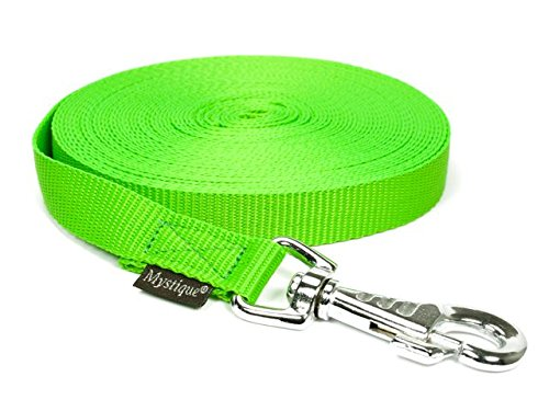 Mystique Nylon Schleppleine 20mm neon grün 6m messing Karabinerhaken mit HS