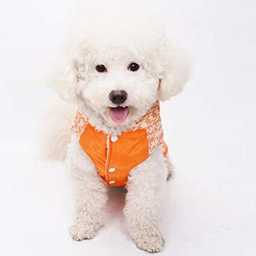 Orange Das Neue Schwarze Kostüm - AUED Halloween Kleidung Haustier Hund