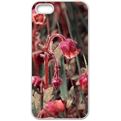 iphone5 iphone5s Case,Rare Beautiful Red Lantern Flowers Pattern Fashion Trend