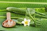 Kerah Lane Pure Skin – Toner & nettoyant naturel pour supprimer les poils incarnés, l'acné, les bosses dues au rasage pour les femmes et les hommes. Utiliser après le rasage, l'épilation et le rasage ou comme sollution générale de soin pour la peau 250mL - 2