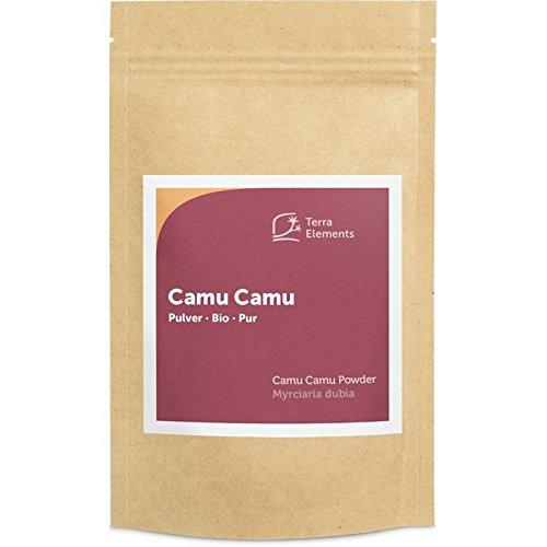 Camu-beere Pulver (Terra Elements Bio Camu Camu Pulver 100 g I Reich an Vitamin C I 100% rein I Vegan I Rohkost)