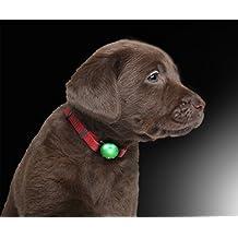 PRECORN Pendiente Luminoso Collar de Silicona para Perros en Verde Brillante para Perros, Gatos