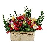 Pot Fleurs - TOOGOO(R) Fleurs Multicolores Miniatures avec Pot de Bois pour Maison de Poupee 1/12 echelle