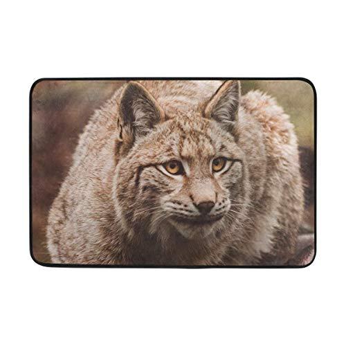 xcvnxtgndx Carpet Lynx Predator Sits Doormat Indoor Outdoor Entrance Floor Mat Bathroom 23.6 X 15.7 Inch/40x60cm - Lynx Outdoor-küchen