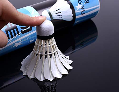 VIWIV Gänsefeather Badminton, 12/1 Röhre, stabil und Nicht leicht zu zerschlagen, Training haltbare Kugel, geeignet für Outdoor, Eltern-Kind, Training, Sport
