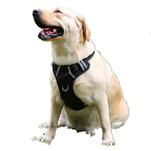 XinC Hundegeschirr Clip Weste verstellbar Hundehalsband Nylon reflektierend atmungsaktiv für große mittlere und kleine Hundegeschirr Weste,XL