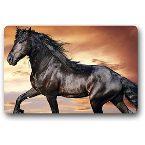 cozybath Cavallo selvaggio non tessuto 23.6