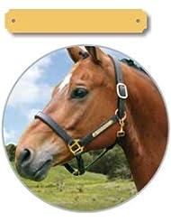 iMARC Plaque pour cheval petit (intérieur ronde)-pour selle