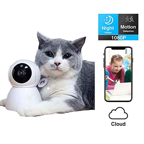 ZWW Monitor Inteligente para Mascotas