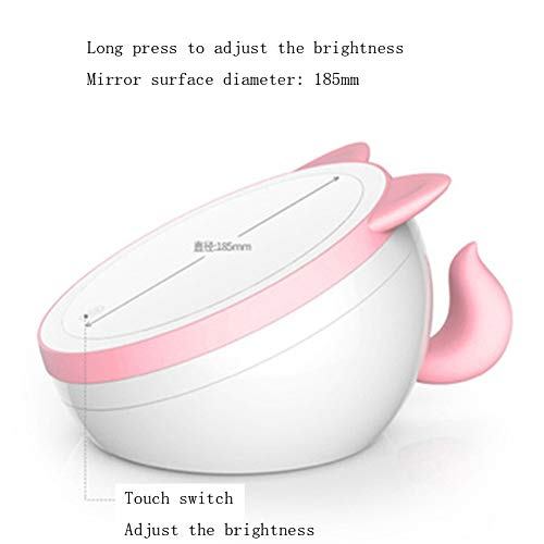 Spiegel LED Make-up Spiegel mit Licht füllen Licht Falten Aufbewahrungsbox 3-mal vergrößern Desktop-Desktop-Mädchen IKEA kreativ 5w