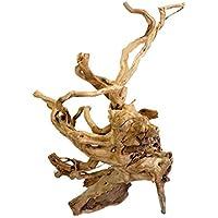 Reptiles Planet Desert Drift madera de adorno para Reptile/Amphibien