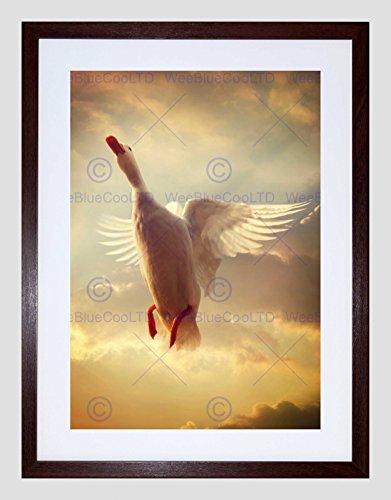 Flying Black Duck (WHITE DUCK FLYING SKIES BLACK FRAME FRAMED ART PRINT PICTURE MOUNT B12X8375)