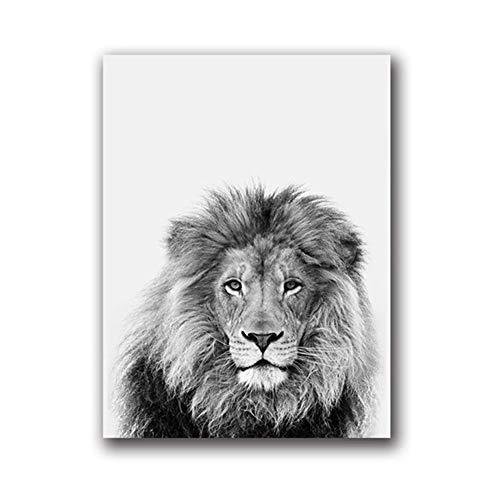 Battle of the peak Leinwand Gemälde Schwarz und Weiß Tier Kunst Dekor Leinwand Malerei Wandbild Safari Foto Kunstdrucke und Poster Modern Home Decor Kein Rahmen (Size (Inch) : 21x30 cm) -