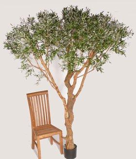 artplants Set 2 x Künstlicher Olivenbaum Parasol mit 9984 Blättern, 220 cm – großer Kunstbaum/Zwei Olivenbäume im Set