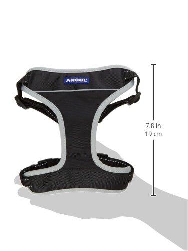 Ancol - Padded Nylon Dog Car Harness - Size - Large 2