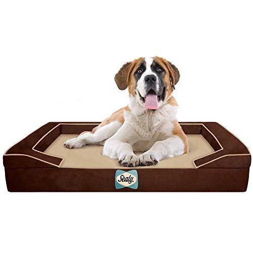 sealy-dog-bed-with-quad-layer-technology-extra-large-autumn-brown-by-sealy-dog-bed