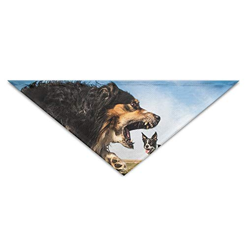 dfegyfr Dogs Roar Border Collie Australian Shepherd Triangle Pet Scarf Dog Bandana Pet Collars for Dog Cat - Birthday