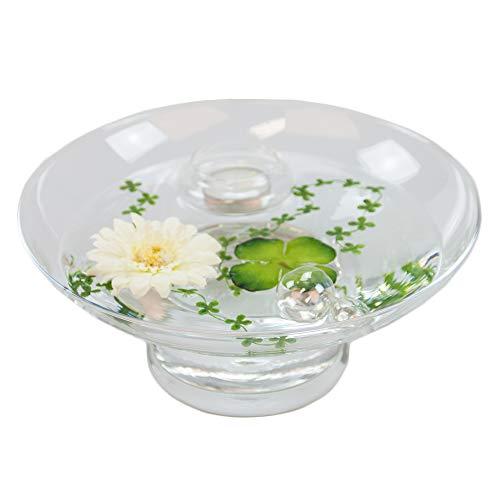 Glaskönig Runde Glas-Schale Hollow H.10cm ø 25cm. Flache Dekoschale rund mit Dekorations Set Gerbera weiß Dekoglas Glasgefäß mit ausgefallener Deko für Ihre Deko Ideen. Glasdeko Glasschalen (Runde Glas-schale)
