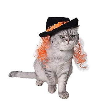 Animal Familier Chat Chiot Halloween Noël Sorcier Chapeau Magique Longueur Réglable Mode