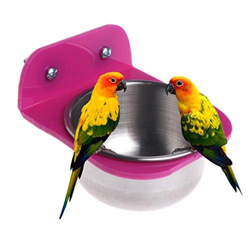 Qiman Edelstahl Lebensmittel Wasser Schüssel Vogel Futterspender für Kisten Käfige Coop Hund Parrot Pet (Hund-wasser-kiste-spender)