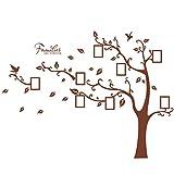 Wandtattoo Wandbild mit großem Baum mit Bilderrahmen am Baum mit Blättern und Vögeln für Wohnzimmer o. Schlafzimmer. Stilvoll, modern und stylisch Wandsticker für Erwachsene Wandaufkleber zum Gestalten einer individuellen Wand