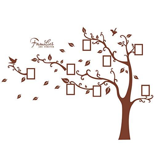 Wandaufkleber, Naturidee Wandbild für Erwachsene, Baum mit Fotorahmen, Blätter, Vögel, Whnozimmer Wandaufkleber, Schlafzimmer, Für Wände Individuelles Haus Elegant und Modern, Vinyl (Sie Bilderrahmen Blättern)