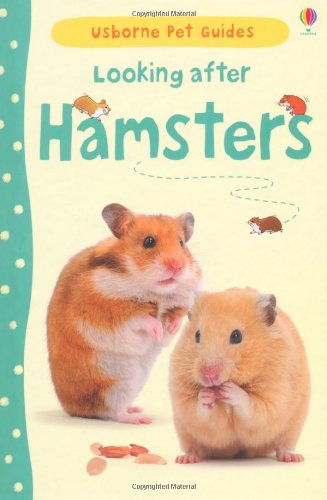 41m1zkNTUOL - BEST PET STORE Looking After Hamsters (Usborne Pet Guides) PRICE Review UK
