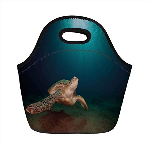 Portable Bento Lunch Bag,Turtle,Green Turtle Swimming Underwater Sunbeams Aquatic Wildlife Picture,Aqua Dark Blue Light Brown,for Kids Adult Thermal Insulated Tote Bags
