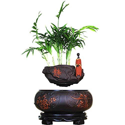 Mauerstein Bonsai Baum