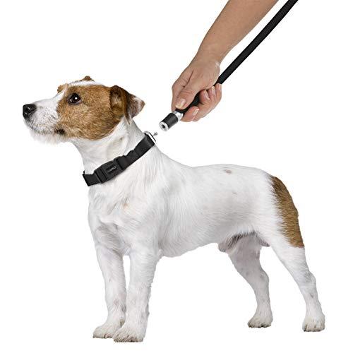 No Name (foreign brand) Hundeleine mit Halsband GoLeyGo...
