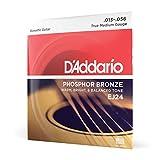 D'Addario Cordes en bronze phosphoreux pour guitare acoustique D'Addario EJ24, True Medium, 13-56