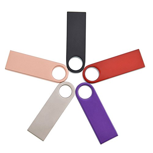Kepmem 5pcs 16GB USB 2.0 Speicher Sticks Mehrfarbig USB-Flash-Laufwerke Mini Metall Memory Stick (Rot Gold Schwarz Lila Silber)