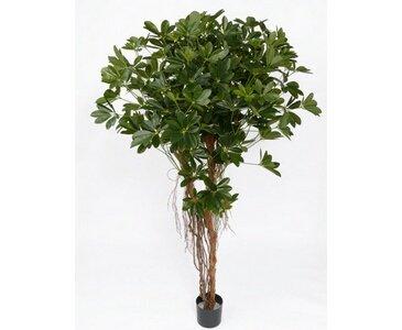 Schefflera Baby, mit 1927 Blätter, Höhe 150cm, Kunstbäume – künstiche Bäume – Kunstpflanzen