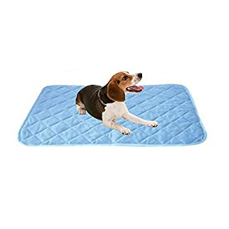 Aolvo Cooling Pet Mat/Pad/Bed, Cooling Mats Extra Large Size for Dogs & Cats – No Electricity Required, Non Toxic, Skin-Friendly – Keep Pets Cool, Cool Stuff for Pet (35.43″ X 23.62″) 41m3r5PIYbL