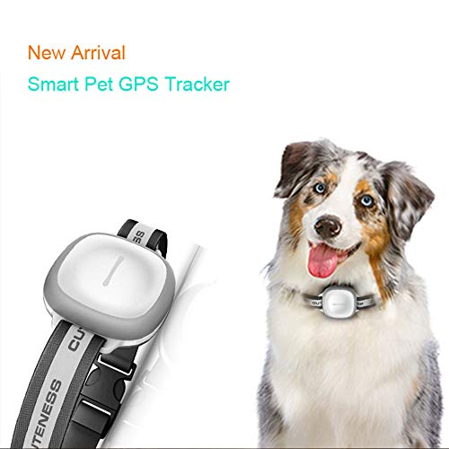 COL PETTI Pet Tracker, Impermeable Perro Gato Ajustable Collar Remoto Apagar Magnética Carga GPS Rastreadores para para Perro Universal