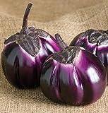 Erbstück Organic 600 Samen Lila Barbar Aubergine-Samen Seltene asiatische Solanum