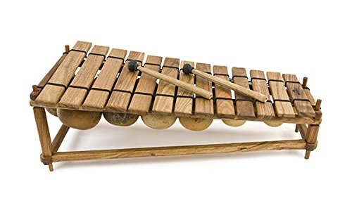 fuzeau-schwimmbad-teich-balafon-13-schlageln