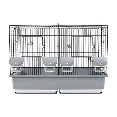 cage oiseau élevage
