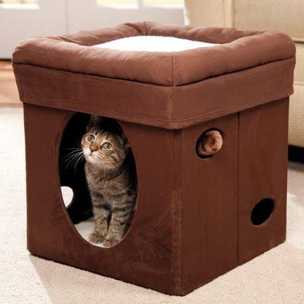 Curious Katze Cube Kuschelhöhle katzenspielzeug für katzen 38,4 x 38,4 x 42cm, Katzenhöhle und Hocker und Katzenbett in 1 Normal €59,5 ! Super Amazon Katzenbettchen Promo