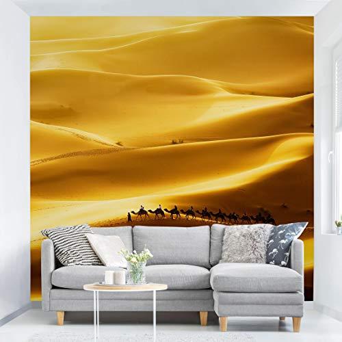 Fototapete selbsthaftend - Golden Dunes - Wandbild Quadrat 336x336 cm - Sonnenaufgang In Der Wüste Fertig