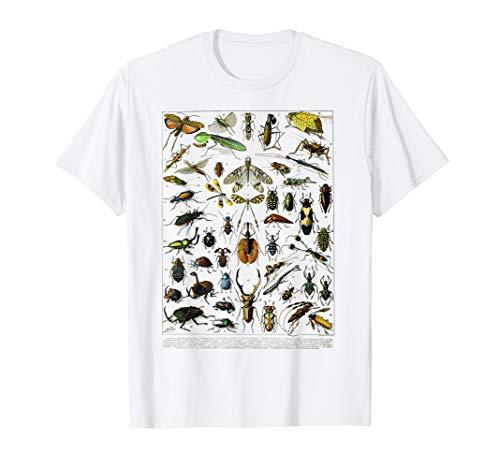 Insects Insect Bug Entomology Print Bug Print Vintage Print T-Shirt - Bug Gelben T-shirt