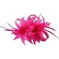 MBZY Tocados Pelo Plumas Mujer Flores Diadema con Clip Vintage Boda Noche  Fiesta Fucsia e52bb822f428