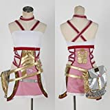 Final Fantasy 13 XIII-2 Serah Farron Cosplay Costume (MX)