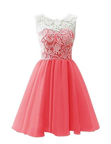 Snowskite Donna Corto Tulle vestito da ballo danza abito con pizzo Coral X-Small