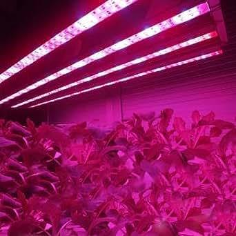 370mm 8.64W wasserdichte Leistungs-8LED Röhrenstreifen wachsen Licht Lampe