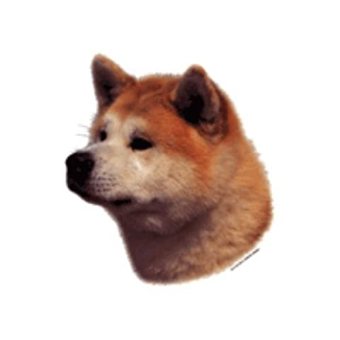 World Stickers Schwandt Heimtierbedarf 12216 Aufkleber 4 Stück ca. 80 x 80 mm für Warnschild Akita Inu rot & (Akita Inu Hund)