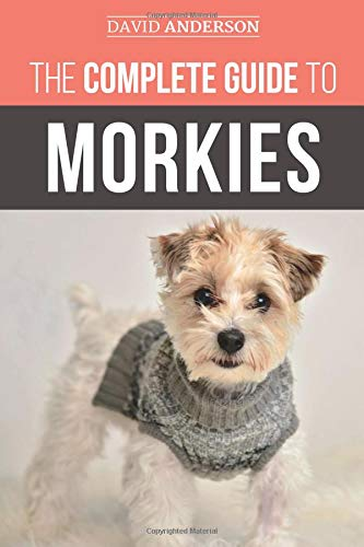 The Complete Guide to Morkies: Everything a new dog owner needs to know about the Maltese x Yorkie dog breed