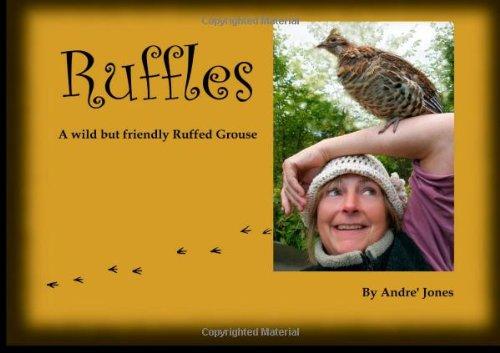 ruffles-a-wild-but-friendly-grouse